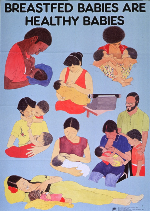 <p>Light blue poster with black lettering.  Title at top of poster.  Poster features seven illustrations of women breastfeeding their babies.  The women sit and recline, sometimes they feed with other family members present.  One woman feeds while seated near a typewriter, presumably at work.  Publisher and sponsor information in lower right corner.</p>