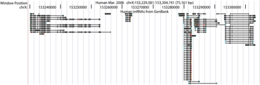 A zoomed-out view of human mRNA alignments in the chrX:153 229 581–153 304 741 region using 'squish' display mode and configured to show nonsynonymous codon differences between the human mRNAs and the genomic sequence. This view is useful for quickly scanning for mRNAs that are free of nonsynonymous regions (i.e. are all-black in color) and have a valid poly(A) tail (green vertical bar).