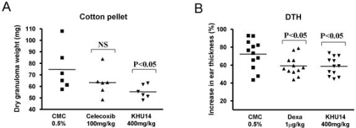 Anti-inflammatory effects of KHU14 on a mouse model of chronic inflammation. (A) Cotton pellet test (n = 6). (B) DTH (n = 12). The mice were orally fed with KHU14 (400 mg/kg of body weight) and celecoxib (100 mg/kg of body weight) for cotton pellet test and dexamethasone (1 mg/kg of body weight) for DTH. The control group received 0.5% CMC orally. NS: not significant.