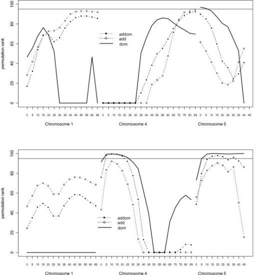 Interval mapping of additive and dominant QTL effects on chicken chromosomes 1, 4 and 5 for weight (top) and conformation-score (bottom). The Y-axis shows the scaled rank of the test statistic obtained when compared to 1000 permutations of genotype within dam for 18 positions on chromosome 4 for weight and conformation-score. Test add is rank of test statistic obtained for model testing for additive QTL, addom is test statistic obtained from testing for both additive and dominant QTL effects and dom is test between two models for dominance only. Dam effect was fitted. Solid line at top is 5% empirical linkage group-wise significance