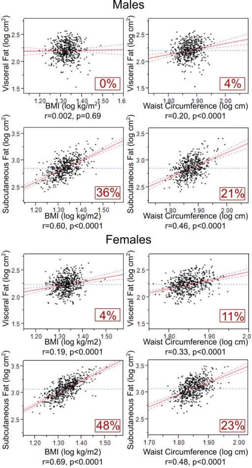 BMI and waist circumference as predictors of VF- and SF-specific quantities (VF and SF adjusted for each other).Multivariate linear regression models examining the relationships of BMI and waist circumference with each VF and SF (while adjusting for each other) are shown in adolescent males and females. All relationships were also adjusted for potentially confounding effects of age and height when appropriate.