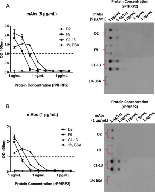Sensitivity of mAbs D2, F9 and C1-13 against rPfHRP2. The binding efficacy of mAbs against serially diluted recombinant PfHRP2 is determined by ELISA (Left panel) and dot blot (Right panel). A: 5 μg/mL of mAbs; B: 1 μg/mL of mAbs. Dot line represents cut-off OD absorbance at 1.0.