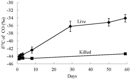 Average stable carbon isotope values of CO in the headspace of non-labeled CO utilization experiments of live and killed control treatments. The error bars are the standard deviation of the average value of the triplicate treatments. Significant isotopic enrichment of 13C in CO was only observed in the live experiments and not the killed controls.