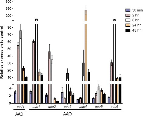 Time course expression ofP. ostreatus aao1-6andaad1genes following the addition of HMF. The expression levels of aao1-6, aad1, and vp1 were monitored by real-time RT-PCR (for primers information see Additional file 4). RNA was extracted from P. ostreatus at different time points (0.5, 2, 8, 14, and 48 h) after addition of 30 mM HMF to the media. The expression levels calculated relative to β-tubulin, as the endogenous control, and represent the expression relative to control without HMF addition. Bars indicate standard errors.