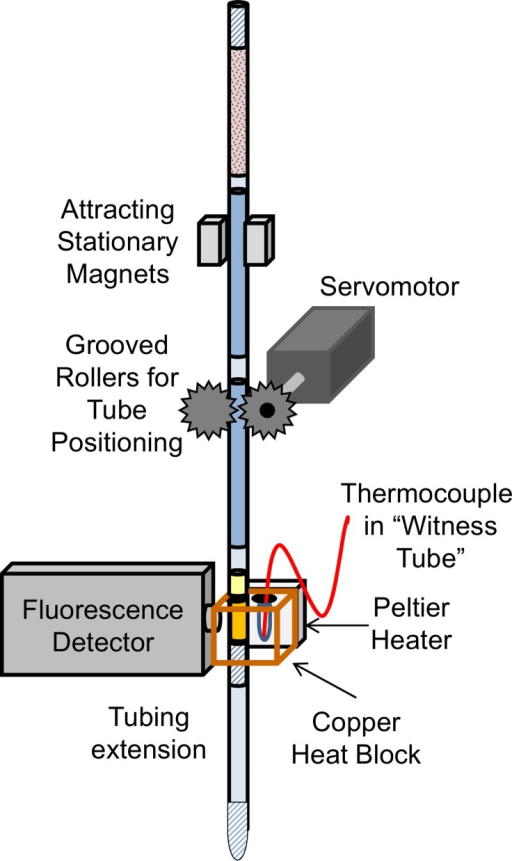 Integrated DNA extraction and amplification device.The extraction tubing was raised and lowered between attracting magnets to move the binding beads through the solutions into the isothermal reaction chamber. After the DNA eluted from the beads, the LAMP solution chamber was positioned for amplification in a copper heat block. The block held the reaction chamber at 65°C while the detector measured fluorescence over time. Diagram not to scale.