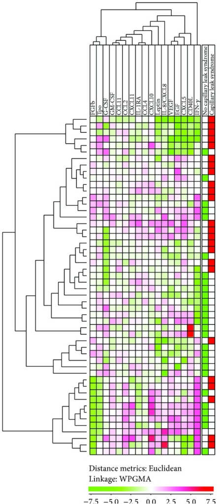 Hierarchical clustering based on the cytokine profiles: a study of the first 56 consecutive patients. Based on the pretransplant cytokine levels we performed an unsupervised hierarchal clustering analysis (Euclidean distance measure with WPGMA linkage). The figure presents the heat map with corresponding dendrograms. The horizontal cytokine clustering is seen at the top of the figure and the vertical patient clustering at the left part of the figure. Red color indicates high levels and green color low levels. The right column shows the distribution of patients with capillary leak syndrome, that is, weight increase ≥5 kg marked with red bars and the others marked with green.