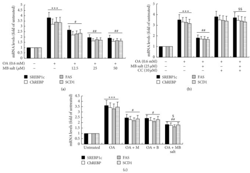 Effects of MB salt on the expression levels of lipogenic transcription factors and their target genes. (a) HepG2 cells were left untreated or treated with OA or OA + MB salt as indicated. ∗∗∗p < 0.001 versus that of untreated cells; #p < 0.05 and ##p < 0.01 versus that of OA alone. (b) Cells were treated as described in Figure 4(a). ∗∗∗p < 0.001 versus that of untreated cells; ##p < 0.01 versus that of OA alone; $$p < 0.01 versus that of OA + MB salt. (c) Cells were treated as described in Figure 4(b). ∗∗∗p < 0.001 versus that of untreated cells; #p < 0.05 and ##p < 0.01 versus that of OA alone; $p < 0.05 versus that of OA + M or OA + B. After treatment for 24 h, cell total RNA was extracted for real-time RT-PCR determination of mRNA levels of indicated genes, which were normalized to that of GAPDH and plotted as fold of untreated cells. Values are mean ± SD of 3 separate experiments.