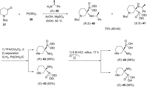 An asymmetric version of the Kabachnik–Fields reaction for the synthesis of α-amino-3-piperidinylphosphonic acids.