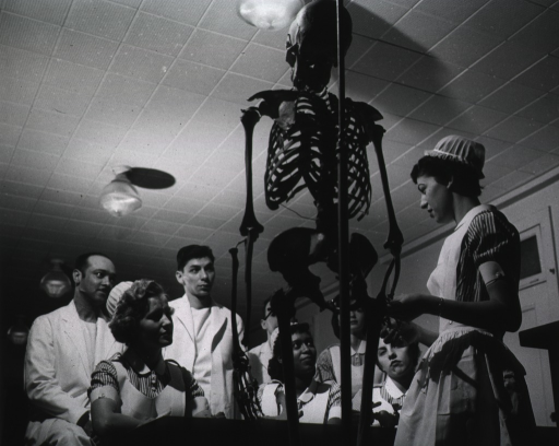 <p>View of a skeletal instruction session.</p>