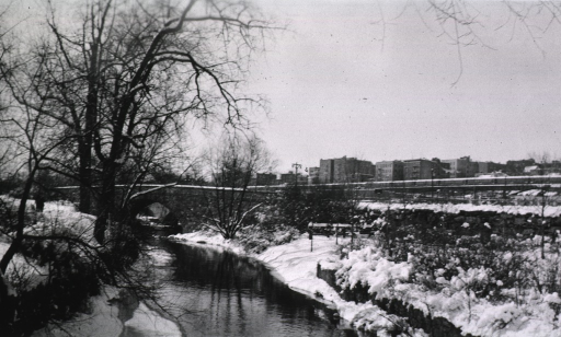 <p>Winter scene showing Bronx Park, south of Gun Hill Road.</p>