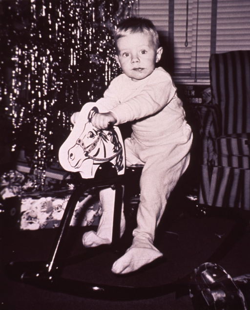 <p>A child is sitting on a rocking horse; a christmas tree is in the background.</p>