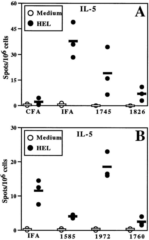 CpG ODN decrease HEL-specific IL-5 production by BALB/c splenocytes.  Mice were immunized as in Fig.  2 (30 μg ODN/mouse), and  splenocytes were harvested for in  vitro restimulation with or without HEL. ELISA spot analysis  was performed for IL-5. The  data are representative of five  similar experiments with CpG-  and non–CpG ODN in BALB/c  mice.