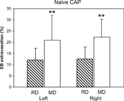CAP-induced plasma extravasation is larger in naive rats fed MD. Extravasation nearly doubled on both sides of the snout in animals maintained on MD (n = 14) compared to those on RD (n = 14; ** p < 0.01). Data represent means ± SD of normalized EB absorbance values (see Methods).