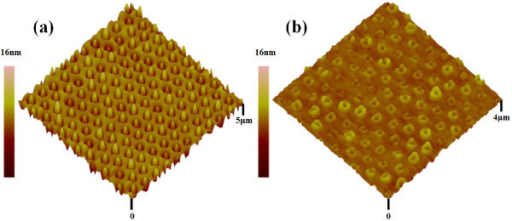 3D AFM images of (a) ordered GeSi QDs and (b)ordered GeSi nanorings.
