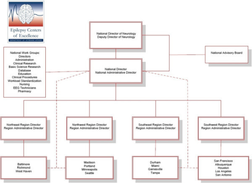 Epilepsy centers of excellence organizational structure.