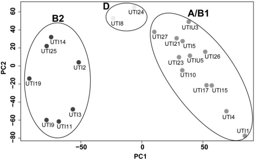Clustering of the in vivo transcripts of the 21 UTI isolates based on principal component analysis (PCA). Clustering clearly reflects phylogenetic relatedness as the clinical isolates grouped according to their affiliation to the B2, D, and A/B1 phylogroups.