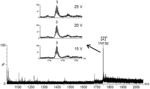 Electrospray mass spectrum of (AGG)4A in the presence 150 mM ammonium acetate. The final single strand RNA concentration was 18 μM. 10% v/v of methanol was added 1 h before measurement. The peak annotation [n]z-­ indicates the number of strands (n) and the total charge (z). The distribution of the number of ammonium ions preserved in the structure is shown in the inset. The distribution is presented at three bias voltages.