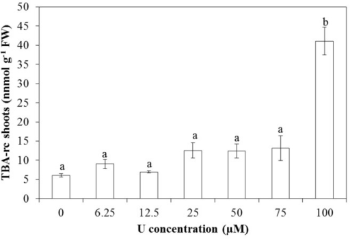 Level of lipid peroxidation, based on the amount of thiobarbituric acid reactive compounds (TBA-rc) in Arabidopsis thaliana leaves exposed to different U concentrations for three days at pH 7.5. Values represent the mean ± S.E. of at least four biological replicates. Data points with different letters are significantly different (p < 0.05).