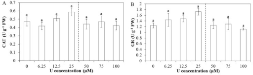 Enzyme capacities (units (U) g−1 FW) of catalase (A, CAT); glutathione reductase (B, GR); guaiacol peroxidase (C, GPX) and syringaldazine peroxidase (D, SPX) in Arabidopsis thaliana leaves exposed to different U concentrations for three days at pH 7.5. Values represent the mean ± S.E. of at least four biological replicates. The vertical line indicates the transition from the increasing trend in enzyme capacities to the decreased capacity. Data points with different letters are significantly different (p < 0.05).