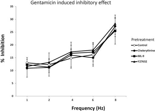 Effect of chelerythrine, ML-9 and Y27632 on EFS in rat bladder smooth muscle treated with gentamicin. Chelerythrine (10 µM), ML-9 (10 µM) and Y27632 (1 µM) was treated 30 min prior to EFS stimulation. The tone was measured under the EFS of 1~8 Hz. Each point represents the mean±SE (n=8).