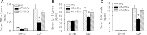 Loss of miR-223 in MSCs negates MSC-induced inhibitory effects on CLP-triggered systemic inflammatory response.Injection of WT-MSCs into mice at 1h post-CLP significantly reduced the circulating levels of inflammatory cytokines: (A) TNF-α, (B) IL-1β, and (C) IL-6, whereas they were not reduced in KO-MSC-treated mice, compared with PBS-treated samples. *p < 0.05, n = 4 for shams, n = 6–8 for CLP mice.