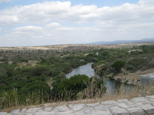 The typical landscape of Kirya Village: A semiarid lowland area in Mwanga District. The photo shows River Pangani (Ruvu) in the foreground (photo by E. E. Wangui)