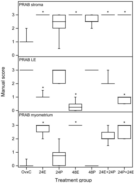 "Scoring results PRAB experiment 1. Results from manual scoring of PRAB immunohistochemistry results in stroma (upper panel), luminal epithelium (LE, middle panel) and myometrium (bottom panel). The ""box-and-whisker plot"" represents the median value with 50% of all data falling within the box. The whiskers extend to the 5th and 95th percentiles. An asterisk indicates a significant (p < 0.05) difference compared to the OvxC group."