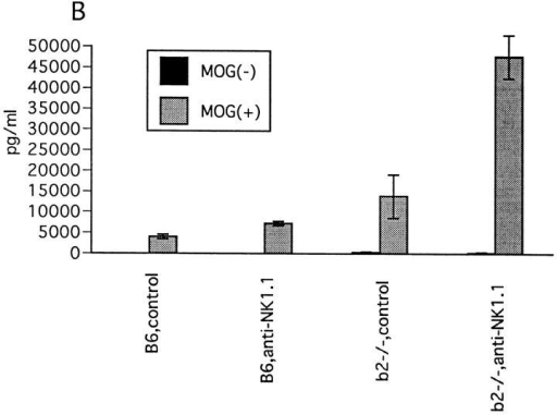 Effect of NK cell deletion on T cell response to MOG35-55.  (A) LN cell proliferative response. 11 d after immunization with MOG35-55,  draining LN cells were prepared and their proliferative responses to  MOG35-55, PLP136-150 (PLP), and rat myelin basic protein89-101 (MBP) (reference 9) were assayed by a standard method. 1 d before immunization,  mice were injected intravenously either with control mAb or with anti-NK1.1 mAb. Data represent mean ± SD of the mean cpm obtained by  triplicate cultures in four independent experiments. Each column shows  the data of wild-type B6 mice pretreated with control M-11 mAb  (B6,control), B6 pretreated with anti-NK1.1 mAb (B6,anti-NK1.1),  β2m−/− mice pretreated with control M-11 mAb (b2m−/−, control), and  β2m−/− mice pretreated with anti-NK1.1 mAb (b2m−/−, anti-NK1.1).  (B) IFN-γ production by LN cells. 11 d after immunization with  MOG35-55, the LN cells from control mAb– (control) or anti-NK1.1 mAb– treated (anti-NK1.1) B6 or β2m−/− mice were cultured for 40 h with  (MOG+) or without MOG35-55 (MOG−) and the supernatants were collected for measurement of IFN-γ, IL-2, IL-4, and IL-10 by ELISA. Although IL-2, IL-4, and IL-10 were not detectable in this experimental  setting, significant production of IFM-γ was measured as shown here.  Data represent mean ± SD of the mean value obtained by duplicate assays  in four independent experiments.