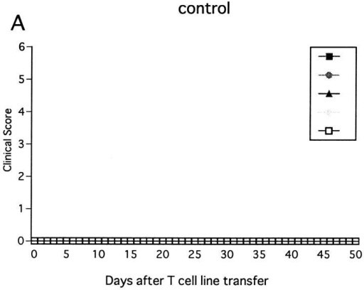 Effect of NK cell deletion on passive EAE in wild-type B6  mice. After activation with MOG35-55 for 3 d, ZB-1 line cells (3 × 106)  were intravenously transferred into wild-type B6 mice pretreated on day  −1 with control mAb (A) or with anti-NK1.1 mAb (B). The mice had  been x irradiated (450 rad) shortly before cell transfer, and received 500  ng of PT immediately after cell transfer.
