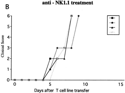 Effect of NK cell deletion on passive EAE in RAG-2−/− mice and the treatment with spleen cells. 5 × 105 of activated ZB-1 line cells were  intravenously transferred into (A) RAG-2−/− mice pretreated on day −1 with control mAb (A) or with anti-NK1.1 mAb (B, C, and D). The mice were  injected with 500 ng PT after cell transfer. Although mice in B did not receive any further manipulation, 2 × 107 of spleen cells from RAG-2−/− mice  were intravenously transferred to mice in C on day 2 and the same number of spleen cells from RAG-2−/− mice which had been pretreated with anti-NK1.1 mAb on day −1, were intravenously transferred to mice in D. This is a representative of two experiments with similar results.