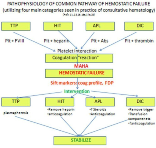 Flow diagram of proposed analytical decision-making in cases of hemostatic failure, which stem from multiple possibilities in a differential diagnosis; while these converge at a common pathway marked by overt hemostatic failure, pursuit of a final diagnosis guides specific intervention. Abbreviations: Abs=antibodies; APL= antiphospholipid antibody syndrome; DIC=disseminated intravascular coagulation; FDP=fibrin degradation products; MAHA=microangiopathic hemolytic anemia; HIT = heparin-induced thrombocytopenia; plt=platelet; TTP= thrombotic thrombocytopenic purpura.