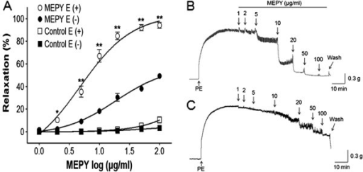 Concentration-dependent relaxant effects of MEPY on phenylephrine (PE, 1 μM)-pre-contracted rat aortic rings with [(E+)] or without [(E-)] endothelium (A) in Krebs-Henseleit solution. Control groups were not treated with MEPY. The MEPY induced-relaxant traces of aortic rings with [(E+)] (B) or without [(E-)] endothelium (C). The relaxant effects of MEPY on isolated rat aortic rings were calculated as a percentage of the contraction in response to PE. Values are expressed as mean ± SEM (n = 8). *P < 0.05, **P < 0.01 vs. MEPY E (−).
