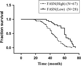 Overall survival based on the expression of FASN. Kaplan–Meier survival analysis showing that high expression of FASN (++ and +++) was associated with a shorter overall survival in comparison with low FASN expression (0 and +) in ovarian cancer (p = 0.000, log-rank test)