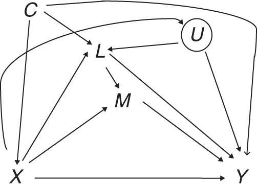 Causal diagram for exposure X, mediator M, outcome Y, intermediate confounder L, and unmeasured intermediate L-Y confounder U. The circle around U indicates that it is unmeasured.