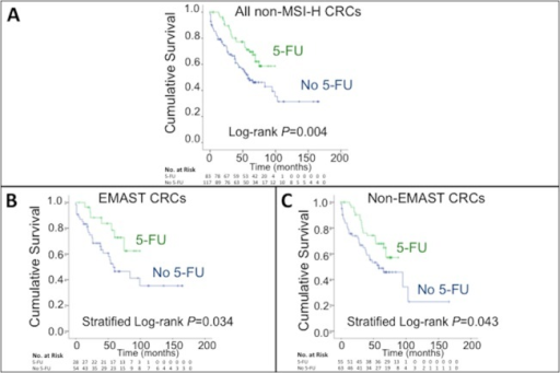Kaplan-Meier plots of cumulative overall survival in patients treated with and without adjuvant 5-FU chemotherapy.(A) Cumulative overall survival of all patients without MSI-H (P = 0.004, log-rank test). (B) Cumulative overall survival of patients with non-MSI-H EMAST-positive tumors (deficient in hMSH3 function) (P = 0.034, stratified log-rank test). (C) Cumulative overall survival of patient with non-MSI-H, non-EMAST tumors (full competency in DNA mismatch repair function) (P = 0.043, stratified log-rank test).