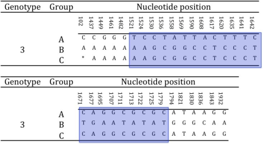 Selection of hypervariable nucleotide changes for phylogenetic analysis.In a hypervariable region of the glycoprotein B gene spanning across approximately 250 nt, are clustered 22 of the 33 unambiguous nucleotide changes differentiating the A and B genogroups within TeHV3. This region was selected for a high-resolution phylogenetic analysis of TeHV3 strains. The light blue block highlights the selected region of the gene. (* = not available nucleotide for the putative group C TeHV strain).