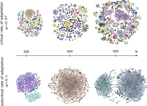 Acquaintance network with coalition structure (each color represents one coalition, black dots are singleton coalitions) for varying system size (columns: N = 300, N = 600 and N = 900) and adaptation rate (rows: ϕ = 0.97 and ϕ = 0.1). Note that some of the smaller network components consist of more than one coalition. Each network is the equilibrium result of one model run.