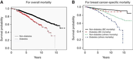 Kaplan–Meier survival probability stratified by diabetes status for overall mortality (A) and breast cancer-specific mortality and non-cancer related mortality from the Fine-Gray competing risk analysis (B). BC, breast cancer.