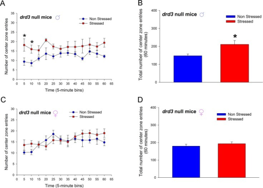 Effect of repeated restraint stress and social isolation during preadolescence on number of center zone entries in an open field arena by adult drd3- mice.Adult male (A, and B) and female (C and D) drd3- mice were either not stressed (blue, n = 5) or subjected to repeated restraint stress and social isolation during preadolescence (red, n = 5). Number of center zone entries were measured in an Open Field test in adulthood. Significant increase in number of entries was observed in stressed male drd3- mice during the initial 10 minute period following the placement of the mice in the arena (*, p<0.05, two-way repeated measure ANOVA, post-hoc SNK test; A). The total number of center zone entries over the entire 60 minute observation period was also significantly increase in stressed male drd3- mice (*, p<0.05, Student's t-test). The stress-induced changes in locomotor activity was absent in adult female drd3- mice subjected to preadolescent stress and social isolation (C and D). Error bars represents ± SEM.