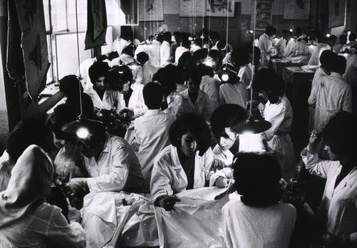 <p>Interior view of a laboratory: many students in small groups are clustered around tables dissecting animal specimens.</p>