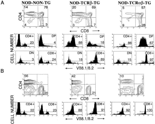 Expression of the TCR-α/β transgenes in 8.3-NOD mice. CD4, CD8, and Vβ8.1/8.2 profiles of thymocytes (A) and lymph node cells (B)  from nontransgenic NOD, 8.3–TCR-β–transgenic NOD, and 8.3-NOD mice. (Top) CD4 versus CD8 contour plots of cell suspensions stained with  anti-CD8-PE, anti-V β8.1/8.2-FITC, and anti-CD4-biotin plus Streptavidin-PerCP. The lower panels show the Vβ8.1/8.2 fluorescence histograms of  each T cell subset after electronic gating. Numbers indicate the average percentage of cells (top) or the average number of Vβ8.1/8.2+ cells (bottom) in  each subset. Data correspond to 3–9 mice/group. DP, double-positive cells; DN, double-negative cells.