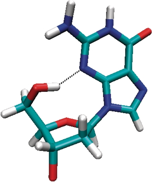 Molecular graphics highlighting the hydrogen bond formed with a high occupancy within the 5′-terminal syn guanosine during the MD simulation.