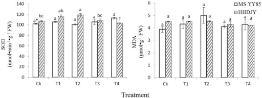 Effects of dual-labeling methods on superoxidase dismutase (SOD) activity and malondialdehyde (MDA) content of tobacco seedling.*significant difference (α = 0.05, LSD) among treatments within the same variety. Error bars represent ±S.E.