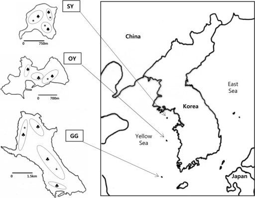 the maps show the geographical features of three korean open i Philippines Geographical Features the maps show the geographical features of three korean islands in the yellow sea the
