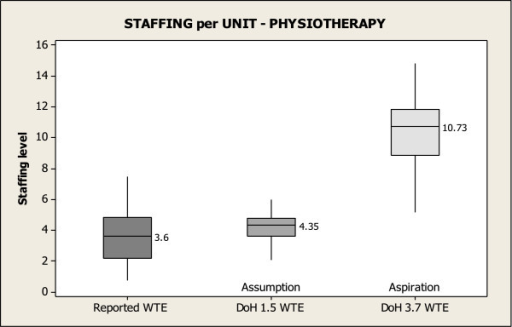 Physiotherapy staffing per unit.