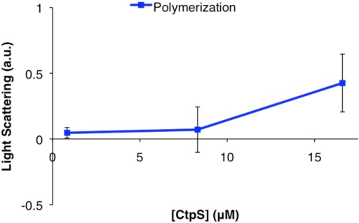CtpSE277R does not polymerize in vitro.Right angle light scattering by CtpSE277R in activity buffer. Error bars = SE, n = 3.DOI:http://dx.doi.org/10.7554/eLife.03638.025