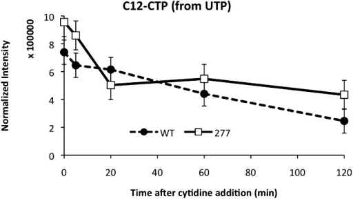 CTP levels probed by mass spectrometry after addition of C13-labeled cytidine to the media.Unlabeled C12-CTP population represents the proportion of CTP synthesized by CtpS from cellular pools of UTP. The CtpSE277R has a higher intracellular C12-CTP pool both at the initial time point as well as at the end of the time course, where C12-CTP is almost twice as high as in the wild-type strain.DOI:http://dx.doi.org/10.7554/eLife.03638.031
