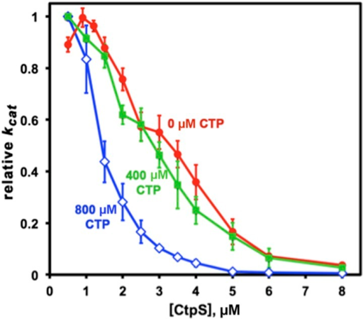 CTP binding enhances polymerization with a sharp response.The concentration required to reduce CtpS-specific activity (kcat) to 50% of its maximum value, [CtpS]0.5, is inversely related to the affinity of the polymer for Ctps tetramers. In the absence of CTP, the [CtpS]0.5 value is 3.3 μM (red circles). At a CTP concentration near the IC50 value (400 μM), the [CtpS]0.5 value is slightly reduced (2.8 μM, green squares), while at 800 μM, the [CtpS]0.5 value significantly shifted towards polymerization ([CtpS]0.5 = 1.4 μM, blue open diamonds). The maximum kcat values before normalization were 6.7, 3.5, and 1.04 s−1 for experiments using 0, 400, and 800 μM CTP, respectively.DOI:http://dx.doi.org/10.7554/eLife.03638.032