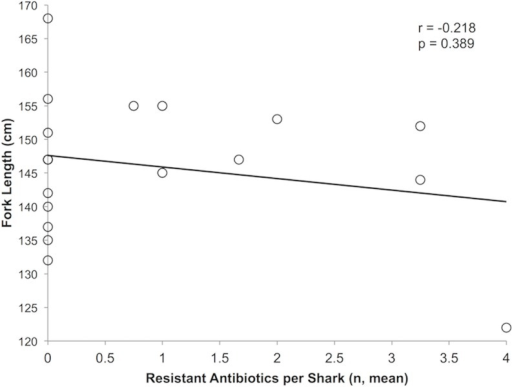 Correlation between the fork length (cm) with the mean number of resistant antibiotics per shark.
