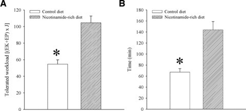 Physical endurance in mice on control and nicotinamide-rich diet. Bar graphs showing energy expenditure (A) and time spent (B) on treadmill of mice on control and nicotinamide-rich diet. Each bar represents mean ± S.E. of the mean (n = 6). *P < 0.05.